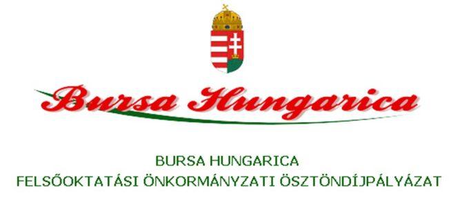 Bursa Hungarica 2019 pályázat